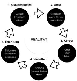 infografik_realitaet_vive-ahora